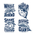 tshirt prints with shark killer and blue whales vector image vector image