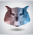 abstract polygonal tirangle animal owl hipster vector image vector image