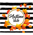 banner for seasonal fall sale vector image vector image