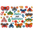 basic rgbset isolated moths and butterflies vector image vector image
