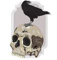 Black Raven Sitting on Skull vector image vector image