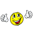 Happy face icon with hands vector image vector image