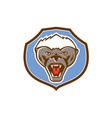 Honey Badger Mascot Head Shield Retro vector image vector image