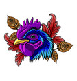 mascot rooster head design vector image