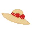 pixel hat vector image vector image