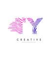ty t y zebra lines letter logo design with vector image