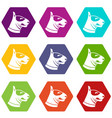 bull terrier dog icon set color hexahedron vector image vector image