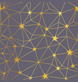 gold grey stars network seamless pattern vector image