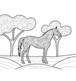 Horse coloring book for adults vector image