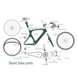 infographic main bike parts with names vector image