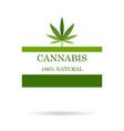 marijuana leaf medical cannabis hemp oil vector image