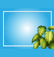 blue background template with green leaves vector image vector image