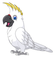 cockatoo cartoon posing vector image vector image