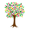 colorful deciduous tree with autumn colored vector image vector image