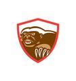 Honey Badger Claws Side Shield Retro vector image vector image