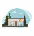 veterinary medicine hospital vector image