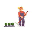 farmer in straw hat with rake cares for cabbage or vector image