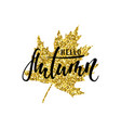 hello autumn text on golden maple leaf foliage vector image