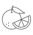 orange fruit thin line icon fruit and vitamin vector image