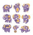 stylized elephant with polka-dotted pattern set of vector image