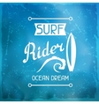 Surfing label on meshes background with stains vector image