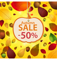 autumn sale label and leaf background vector image vector image