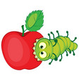 cartoon caterpillar gnaws apple vector image vector image