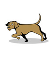 confused pointer dog vector image vector image