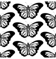 Graphic butterfly black and white seamless pattern vector image