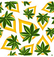 pattern leaves hemp organic natural vector image vector image