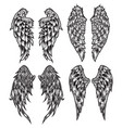 wings bird feather black white tattoo set 5 vector image vector image