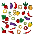 Beets eggplants chili and bell peppers vector image