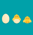 Button chicken and egg in flat style