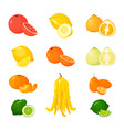 cartoon citrus set icons isolated fruits vector image