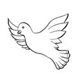 dove flying bird in sketch style outline or vector image vector image