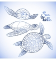 Hawksbill sea turtle collection vector image vector image