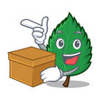 with box mint leaves character cartoon vector image