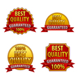 best quality vector image
