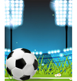 Ball on the Soccer field vector image