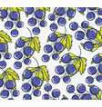 grapes pattern background vector image vector image