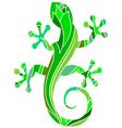Green salamander vector image