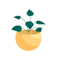 House plant in a pot icon cartoon style vector image vector image