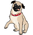 pug vector image vector image