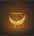 ramadan kareem glitter design vector image