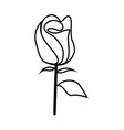 thin line rose icon vector image vector image