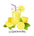 Fresh lemonade with lemon fruit slice Realistic vector image