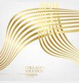 abstract mesh of golden lines isolated over white vector image