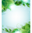 Branch with leaves vector image vector image