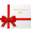 greeting wrapping card vector image vector image