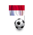 Soccer Balls or Footballs with flag of Monaco vector image